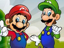 Mario 2 Player