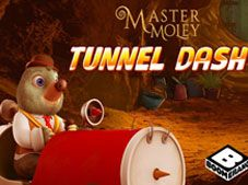 Master Moley Tunnel Dash