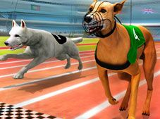 Real Dog Racing Simulator 3D